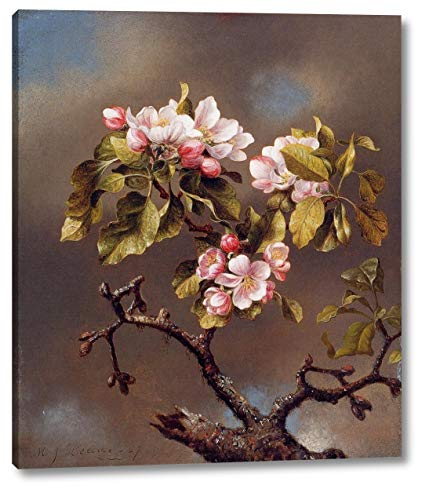 Branch of Apple Blossoms Against a Cloudy Sky by Martin Johnson Heade - 15