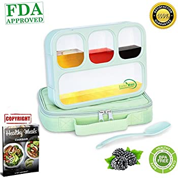 Amazon.com: Bentology - Bento Lunch Box with Weight Loss