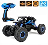 2.4Ghz 1/18 RC Rock Crawler Vehicle Buggy Car 4 WD Shaft Drive High Speed ...