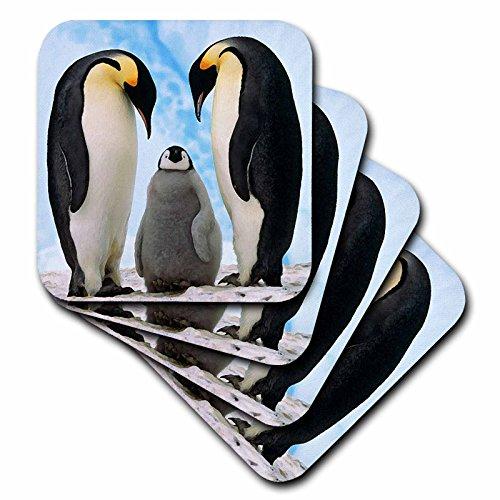 3dRose LLC Emperor Penguin Family Ceramic Tile Coaster, Set of (Penguin Tile)