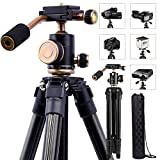 DSLR Travel Tripod, Portable Lightweight Camera SLR Ball Tripods with 1/4 Plate,Bubble Fluid