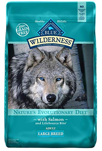 Blue Buffalo Wilderness High Protein Grain Free, Natural Adult Large Breed Dry Dog Food, Salmon -