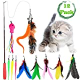 ENINFUT Cat Feather Toy, Cat Toy Wand, Include 1 Wand & 11 Replacement Feathers Worms Fish for Cat, Kitty, Kitten