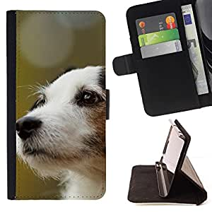 Momo Phone Case / Flip Funda de Cuero Case Cover - Jack Russell Terrier perro canina; - Apple Iphone 5 / 5S