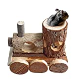 """B & P 5.91"""" x 6.3"""" x 4.33"""" Natural Wood Little Train Hamster Toys Pet Products"""