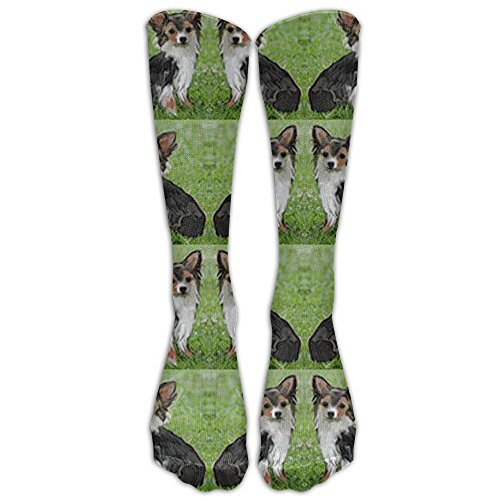 Classic Chihuahua Adorable Long Coated Tricolor Toy Dogs Unisex Tube Socks Knee High Sports Classic Comfort Laser Pointer
