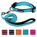 azuza Durable Padded Dog Leash and Collar Set,Reflective Strip Extra Safe and Comfy for Small Dogs,Blue