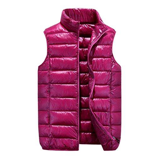 フラッシュのように素早くハッチどこにでもCozy Maker(C&M)べスト レディース 中綿ベスト 袖なし 立ち襟 軽量 ポケット付き 無地 防寒 暖かい カジュアル シンプル ノースリーブ 通勤 通学 大きいサイズ アウター トップス 厚手 ファスナー
