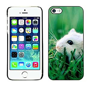 Omega Case Strong & Slim Polycarbonate Cover - Apple iPhone 5 / 5S ( Happy Cute Pet Rat )