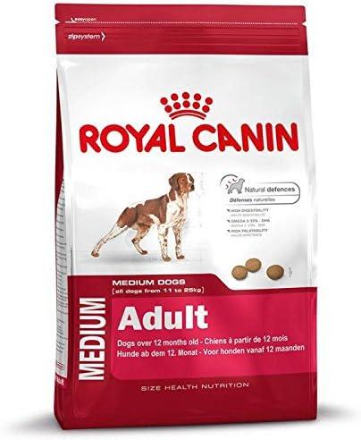Royal Canin - Royal Canin Medium Adult - 243 - 4 kg