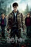Harry Potter And The Deathly Hallows: Part 2 - Movie Poster (Regular Style) (Size: 22' x 34')
