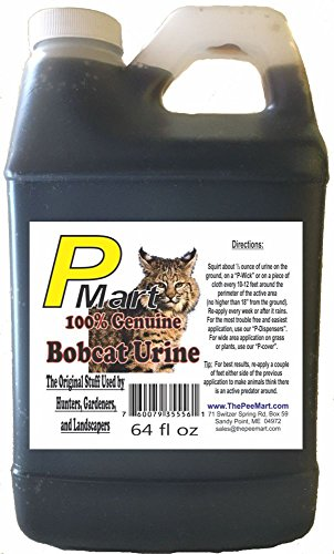 The Pee Mart - Bobcat Urine 64 oz Bulk Filler!