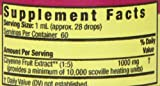 Nature's Answer Cayenne Fruit with Organic Alcohol, 2-Fluid Ounces
