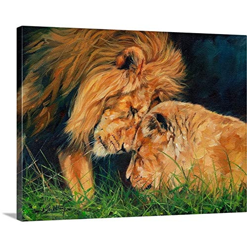 David Stribbling Premium Thick-Wrap Canvas Wall Art Print entitled Lion Love 40