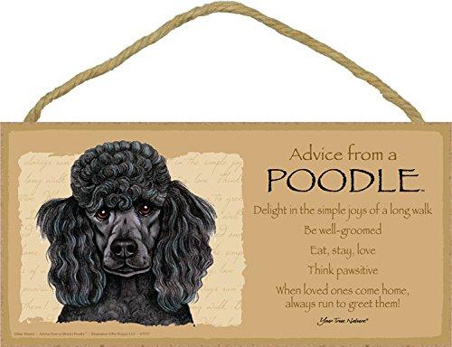 SJT ENTERPRISES, INC. Advice from a Poodle (Black) 5