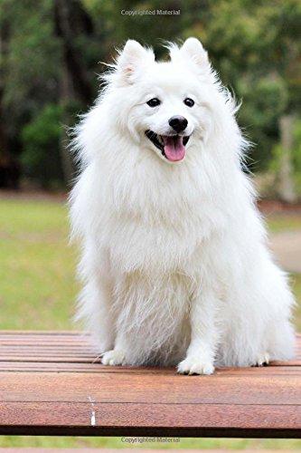 amazon sweet happy fluffy white spitz puppy dog pet journal cs