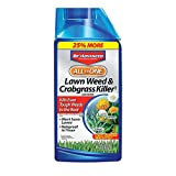 BioAdvanced 704140A All-in-One Lawn Weed & Crabgrass Killer Concentrate Rainproof Herbicide, 32-Ounce