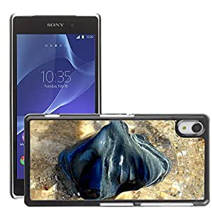 Hot Style Cell Phone PC Hard Case Cover // M00307545 Rock Sea Ocean Nature Water // Sony Xepria Z2 L50W