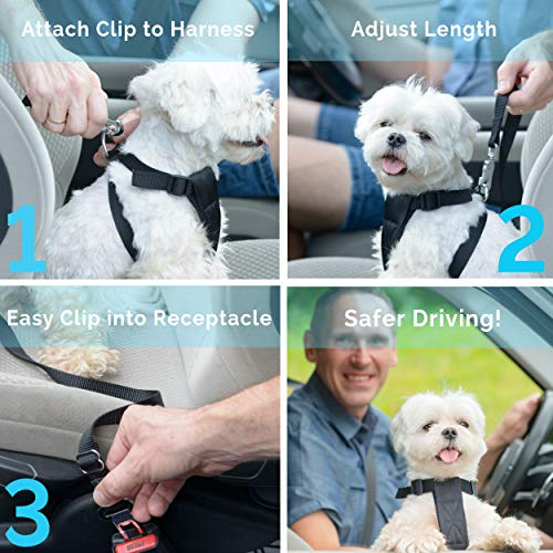 Dog Seat Belt, Pet Dog Cat Car Seat Belt Safety - Adjustable Safety Belt Pet Leash - Heavy Duty Nylon - Universal Fit (2 Pack Elastic Leash)