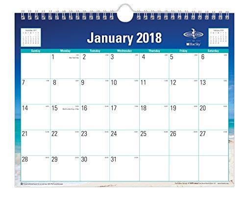"Blue Sky 2018 Monthly Wall Calendar, Twin-Wire Binding, 11"" x 8.75"", Endless Summer"