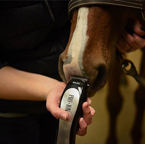 Wahl Professional Animal Pro Ion Equine Cordless Horse Clipper and Grooming  Kit (#9705-100)