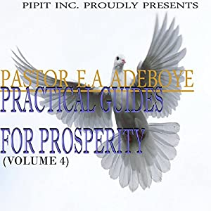 Practical Guides for Prosperity, Book 4 Audiobook