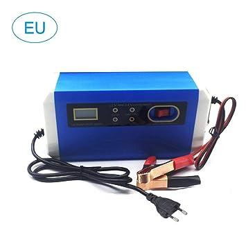 Cargadores de baterías 12V / 24V Cargador Inteligente de ...