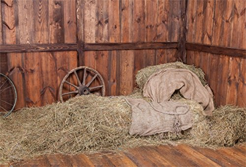 CSFOTO 5x3ft Background for Barn Inside Haystack Photography Backdrop Farmhouse Straw Bales Farm Autumn Farm Land Wood Wheal Countryside Village Rural Scene Photo Studio Props Vinyl Wallpaper
