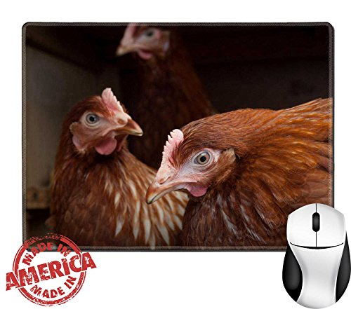 """Price comparison product image Luxlady Natural Rubber Mouse Pad/Mat with Stitched Edges 9.8"""" x 7.9"""" Resting hens in the chicken coop IMAGE 21228478"""