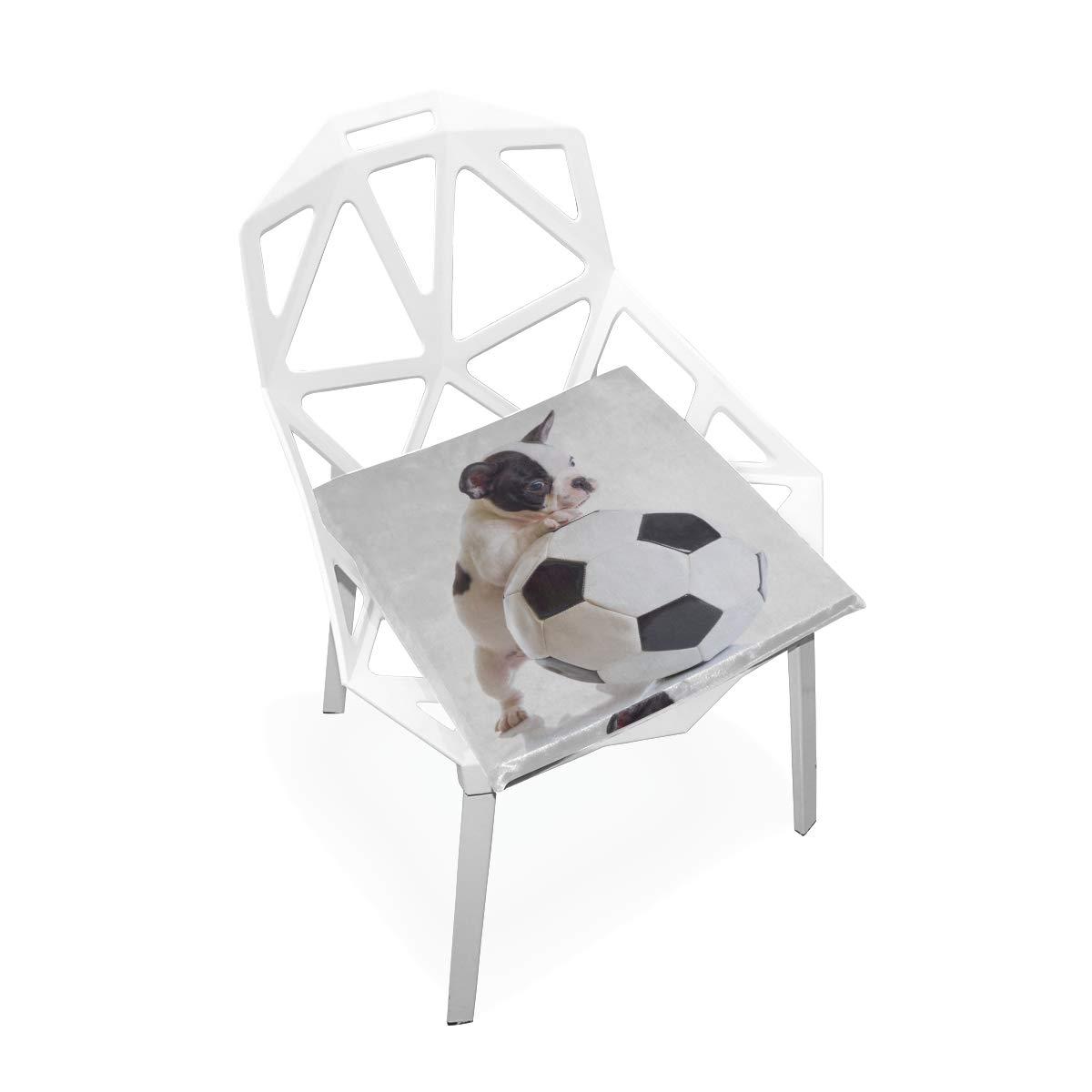 Cojín de silla 16x16 Cachorro de bulldog francés con balón de ...