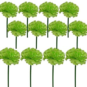 Lily Garden 12 Stems Artificial Carnation Flower Silk Bouquet (Green) 1