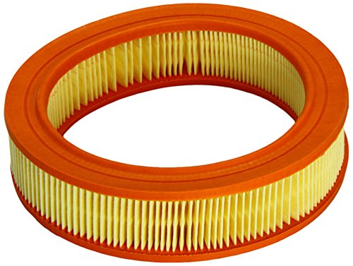 Coopersfiaam Filters FL6664 Air Filter: