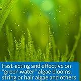 API ALGAEFIX Algae Control, Controls Algae Growth