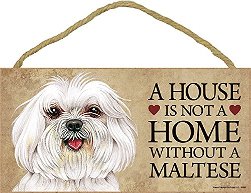 Maltese Coaster (Maltese Wood Dog Sign Wall Plaque Photo Display Puppy Cut A House Is Not A + Bonus Coaster)