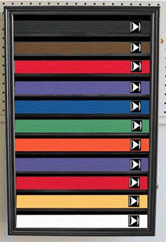 Martial Art /Karate/Taekwondo Belt Display Case Rack Wall Cabinet, with DOOR to Prevent Dust, K-HW11 (BLACK Finish)