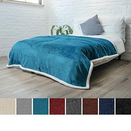 PAVILIA Premium Sherpa Twin Size Blanket | Flannel Fleece Twin Bed Turquoise Blue Blanket | Plush, Soft, Cozy, Warm, Lightweight Microfiber, Reversible, All Season Use (Sea Blue, 60 x 80 Inches)