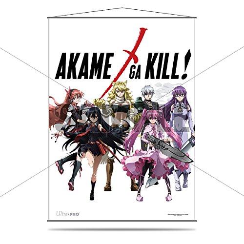 anime akame ga kill - 4