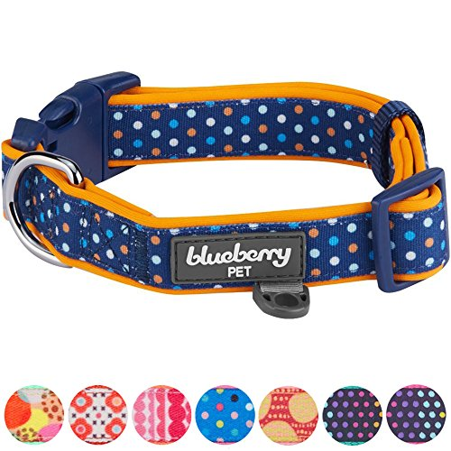 Blueberry Pet 6 Patterns Multicolor Polka Dot Neoprene Padded Adjustable Dog Collar in Passion Orange, Small, Neck 12
