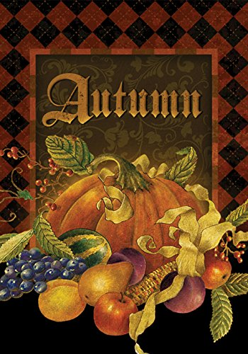 - Toland Home Garden Autumn Argyle 28 x 40 Inch Decorative Fall Pumpkin Fruit Harvest House Flag