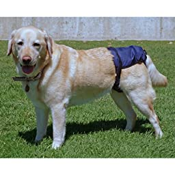SnuggEase Washable Dog Diaper (Pack of 2), XXX-Large