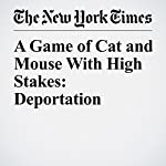 A Game of Cat and Mouse With High Stakes: Deportation | Liz Robbins