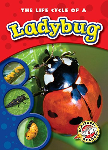 Life Cycle of a Ladybug, The (Blastoff! Readers: Life Cycles) (Life Cycles: Blastoff! Readers, Level 3)