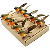 Yolococa Very Cute Artificial Feather Robin Bird Christmas Tree Decoration Craft