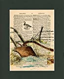 Vintage Dictionary Art Print-Plow in the Snow