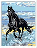 Ravensburger 28119 - Kit para aprender a pintar, diseño de caballo al galope