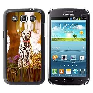 Caucho caso de Shell duro de la cubierta de accesorios de protección BY RAYDREAMMM - Samsung Galaxy Win I8550 - dalmatian puppy dog wood