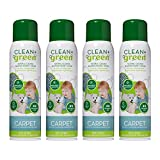Carpet Cleaner- Natural Non-Toxic Stain Remover and Odor Eliminator – Deep Clean Your Carpeted Floors with this Multi Purpose Spray- Safe for Kids, Pets, People, and Environment (14oz) (4 Pack)