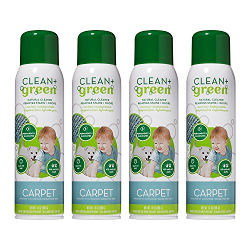 Carpet Cleaner- Natural Non-Toxic Stain Remover and Odor Eliminator - Deep Clean Your Carpeted Floors with this Multi Purpose Spray- Safe for Kids, Pets, People, and Environment (14oz) (4 Pack)