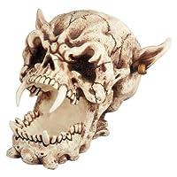 Cráneo de demonio - Figura de colección estatuilla Escultura Esqueleto