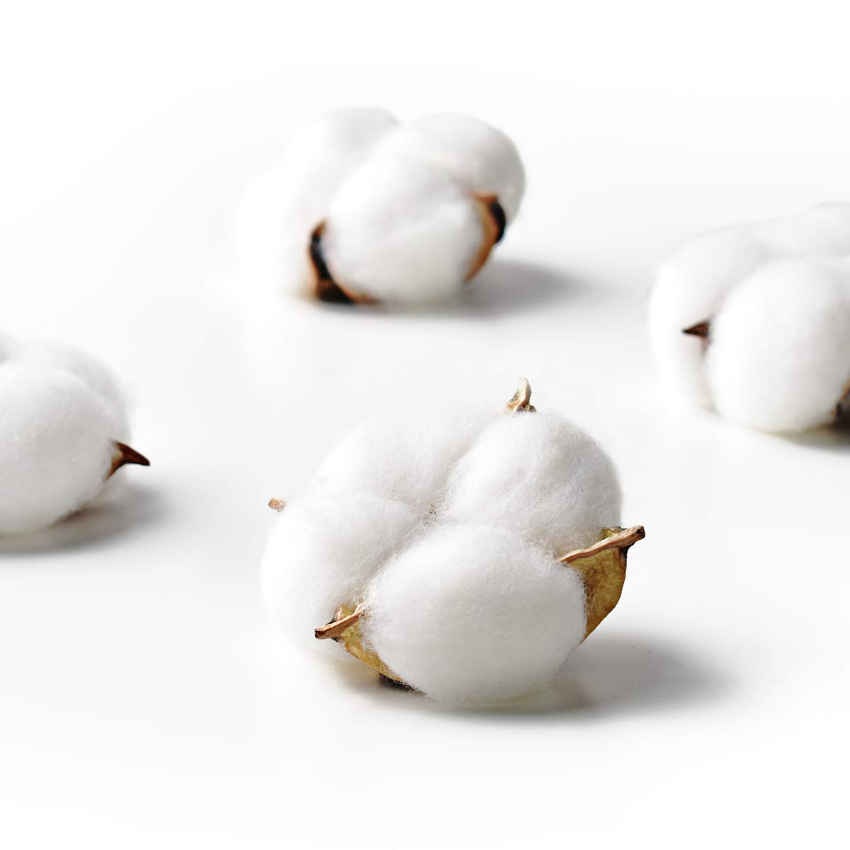 Hagao Cotton Balls Wreath Decor Cotton Bolls Made of Real Natural Cotton Great for Crafting Farmhouse Style 20 pcs